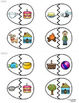 Compound Words Matching Game ~ Spring-Themed