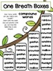 Compound Words- Phonics Unit, Word Work and Literacy Center Activities