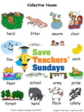 Collective nouns worksheets and activity