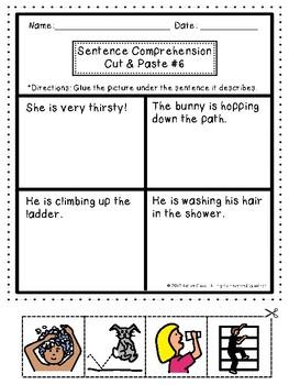 Sentence Comprehension: One Sentence