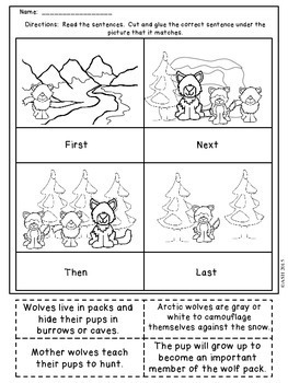 Winter Comprehension Cut and Paste No Prep Print and Go