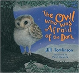 Comprehension PPT on the story 'The Owl who was afraid of