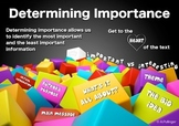 Comprehension Poster - Determining Importance