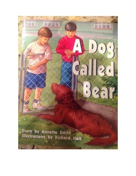 A Dog Called Bear, Comprehension Questions and Answers