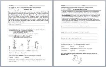 Comprehension Reading Passages Morning Work or Homework Spanish