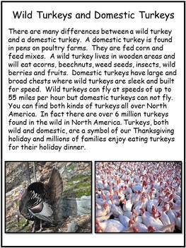 Thanksgiving Reading Comprehension Worksheets - Informational Passages