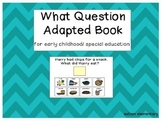 What Questions - Adapted Book for Special Education