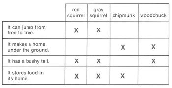 Compare/Contrast: Types of Squirrels Worksheet w/ Reading Comprehension Skills