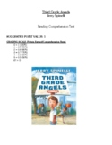Comprehension Test - Third Grade Angels (Spinelli)