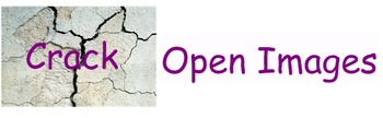 """Comprehension Toolkit Lesson 13 """"Crack Open Images"""""""
