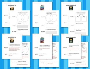 Comprehension Worksheets for Benchmark Literacy - Grade 2, Unit 8