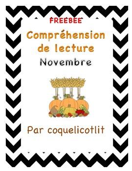 Compréhension de lecture - Novembre