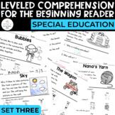 Comprehension for the Beginning Reader 3