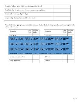Comprehensive Cell Organelles Sort/Review/Worksheet