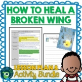 How to Heal a Broken Wing by Bob Graham Lesson Plan and Activities
