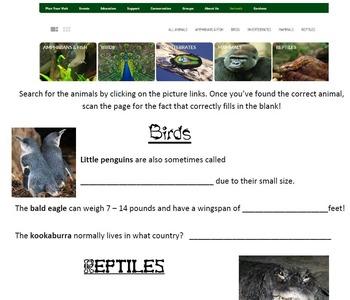 Computer Class - Cincinnati Zoo Animals Web Quest