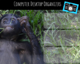 Computer Desktop Organizers and Wallpaper - Baby Apes Theme