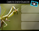 Computer Desktop Organizers and Wallpaper - Praying Mantis Theme