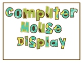 Computer Mouse Display