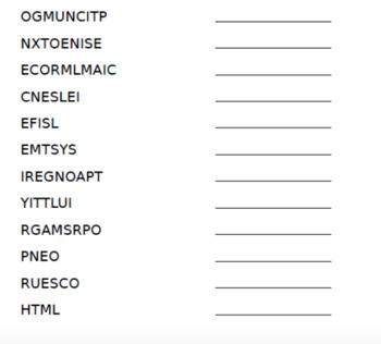 Computer Software Word Scramble
