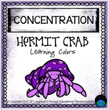 Concentration Hermit Crab