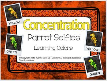Concentration Parrot Selfies Learning Colors