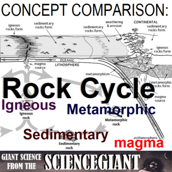 Concept Compare Frame: Rock Cycle (Igneous, Sedimentary, Metamorphic)