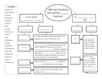 Cells Structure And Function Concept Map By Mrs Proton Priest Tpt