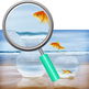 Concept Photos of Goldfish Photographic Clip Art Set for Commercial Use