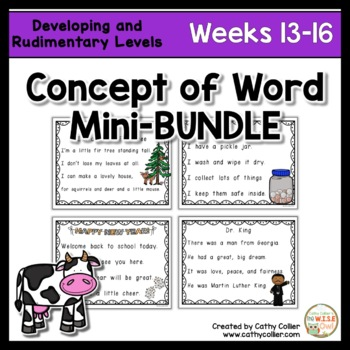 Concept of Word Intervention BUNDLE:  Weeks 13-16
