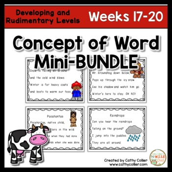 Concept of Word Intervention BUNDLE:  Weeks 17-20