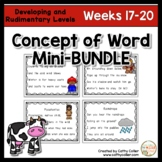 Concept of Word Intervention BUNDLE:  Weeks 17-20