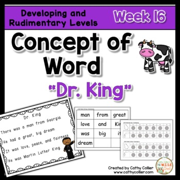Concept of Word Intervention:  Week 16