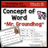 Concept of Word Intervention:  Week 18
