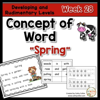 Concept of Word Intervention:  Week 28