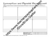 Psychology Conception and Prenatal Development Storyboard