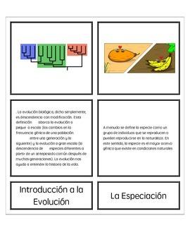 Concepto de Evolución Explicada