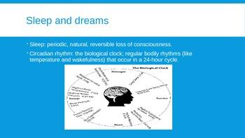 Conciousness/Sleep