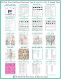 Conditional Sentences Type 2 Level 4-A Unit 9 Bundle
