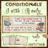 """Conditionals: """"I wish"""", """"If only"""""""