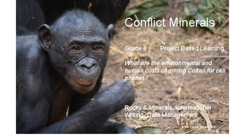 Conflict Minerals: The Environmental and Human Impact of Mining