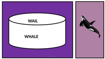Confusing Homophones