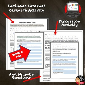 Congressional Committees: Lecture & Internet Activity (Civics)