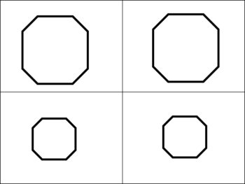 Congruent or Similar?