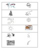 Coniferous forest vocabulary cards