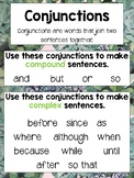 Conjunctions Poster Succulent-Themed A3