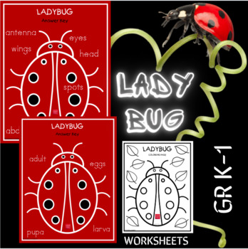Lady Bug - Connect the Dots