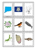 Connecticut State Symbols themed Memory Match Game. Preschool Game