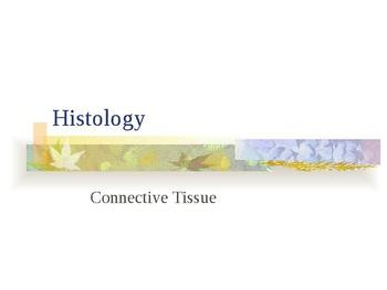 Connective Tissue Presentation