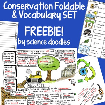 Conservation Interactive Notebook Foldable FREEBIE!